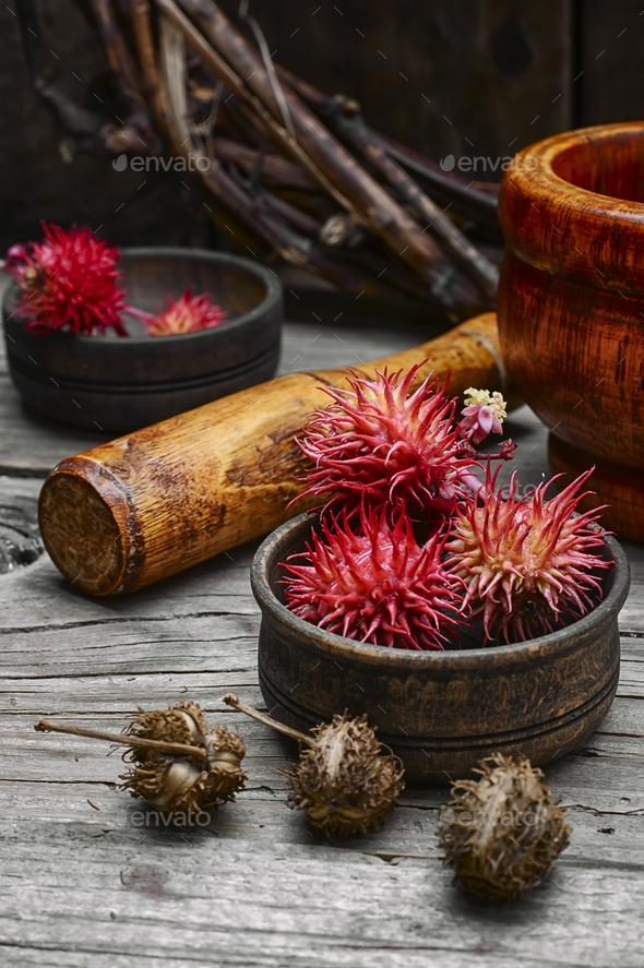 herbs alternative medicine - Stock Photo - Images