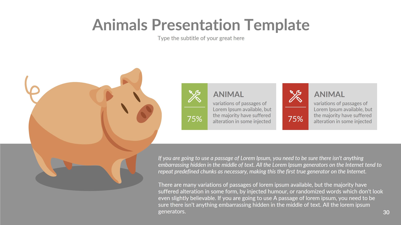 animal presentation template
