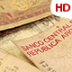 Various Foreign Currency 0424 - VideoHive Item for Sale