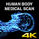 Human Body Medical Scan Side - VideoHive Item for Sale