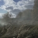 Military Smoke Go Through The Battle. Soldiers Are Attacking Through Smoke Ambush - VideoHive Item for Sale