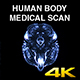 Human Body Medical Scan - VideoHive Item for Sale