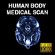 Human Body Axial Medical Scan - VideoHive Item for Sale