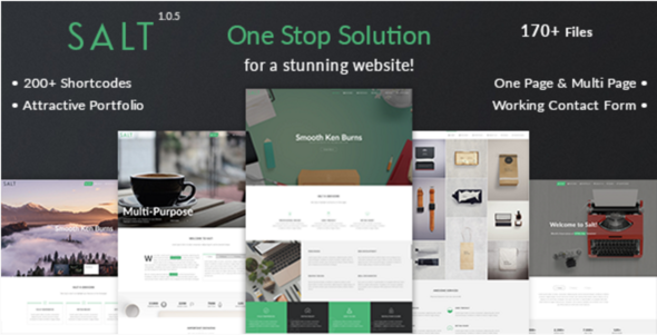 Salt   Responsive Multi-Purpose WordPress Theme