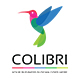 Colibri Logo - GraphicRiver Item for Sale