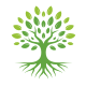 Root Tree Logo