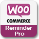 WooCommerce Reminder Emails for WordPress - CodeCanyon Item for Sale