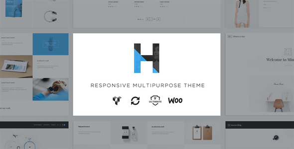 Hydrus – Responsive Multi-Purpose WordPress Theme