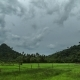Cloudy In Tropical Jungle Mountain Of Palawan Island - VideoHive Item for Sale