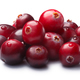 Pile of wild cranberries, clipping paths - PhotoDune Item for Sale