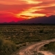 Desert With Dry Plants At Sunset In Altyn Emel National Park, Kazakhstan, Central Asia.   - - VideoHive Item for Sale
