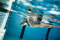 Young man swimming the front crawl in a pool. - PhotoDune Item for Sale
