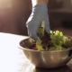 Hands Of Chef In Gloves Mixing Lettuce With Sauce In Steel Bowl - VideoHive Item for Sale