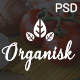 Organisk - Multi-Purpose Organic PSD Template - ThemeForest Item for Sale