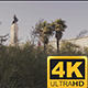 Marques de Pombal Roundabout and Statue in Lisbon, Portugal - VideoHive Item for Sale
