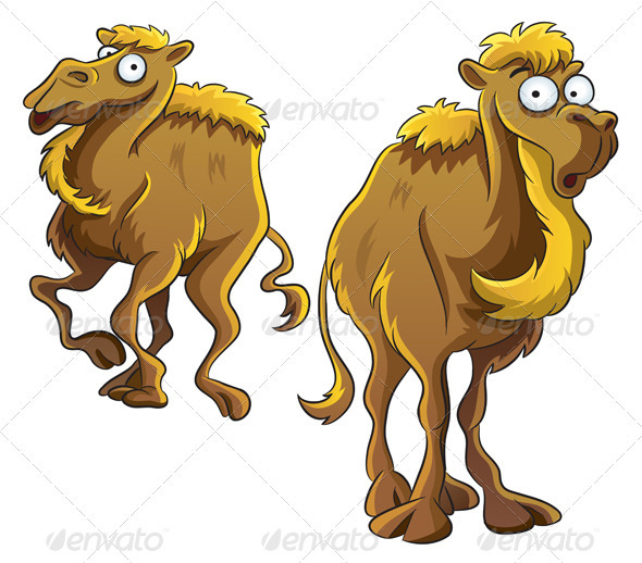 Funny Camel - Animals Characters