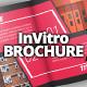 InVitro Company Brochure / Catalog Template - GraphicRiver Item for Sale