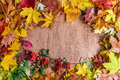 Frame made of fall leaves on wood. Autumn background - PhotoDune Item for Sale