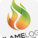 Flame / Fire - Logo Template - GraphicRiver Item for Sale