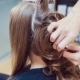 Hair Stylist Makes Professional Hairstyle Of Young Woman In Beauty Studio - VideoHive Item for Sale