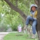 Cheerful Little Boy Sits On a Tree - VideoHive Item for Sale
