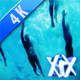 Swimming Race Underwater - VideoHive Item for Sale