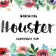 Houster Script - GraphicRiver Item for Sale