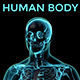 Human Body - VideoHive Item for Sale