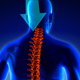 Neck Pain - VideoHive Item for Sale