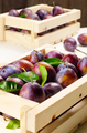 Wooden crate with plums - PhotoDune Item for Sale