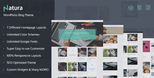 Natura – Responsive WordPress Blog Theme