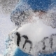 Boy Blows Snow With Hands  In - VideoHive Item for Sale