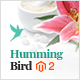Hummingbird - Responsive Magento 2 Theme - ThemeForest Item for Sale