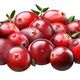 Superpositioned pile of cranberries, paths - PhotoDune Item for Sale