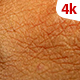 Human Skin 701 - VideoHive Item for Sale