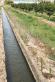 Irrigation canal and fruit trees - PhotoDune Item for Sale