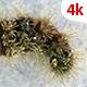 Living Caterpillar 650 - VideoHive Item for Sale
