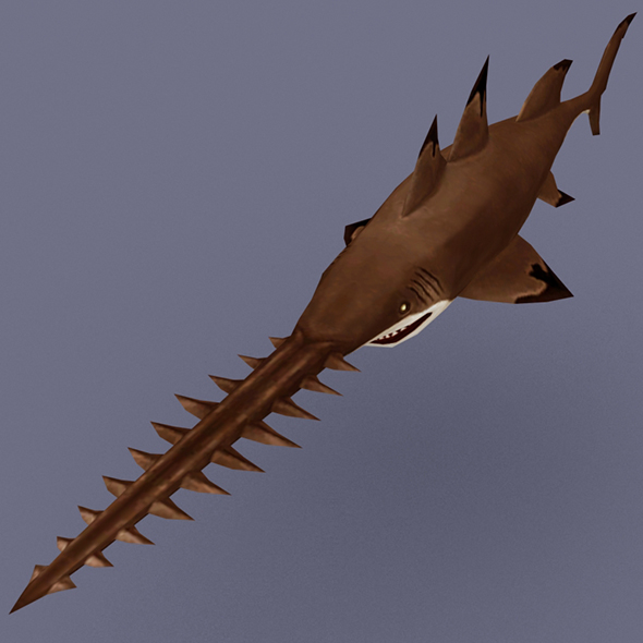 Shark_Saw_Brown - 3DOcean Item for Sale
