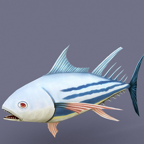 Striped Tuna Light - 3DOcean Item for Sale