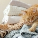 Cute Ginger Cat Sleeps On a Pile Of Knitted Clothes. Warm Knitted Sweaters And Scarfs Are Folded In - VideoHive Item for Sale