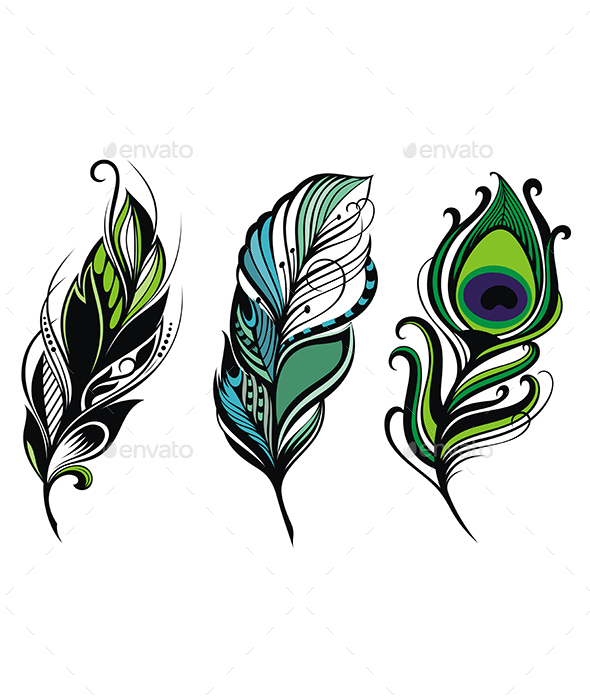 Peacock Feathers - Decorative Symbols Decorative