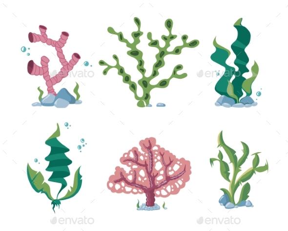 Underwater Seaweeds, Aqua Kelp, Ocean And Aquarium - Objects Vectors