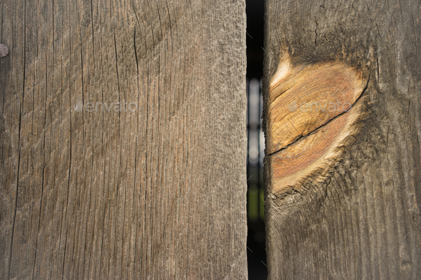 Weathered Barn Wall Wood Grain Plank Orange Knot - Stock Photo - Images