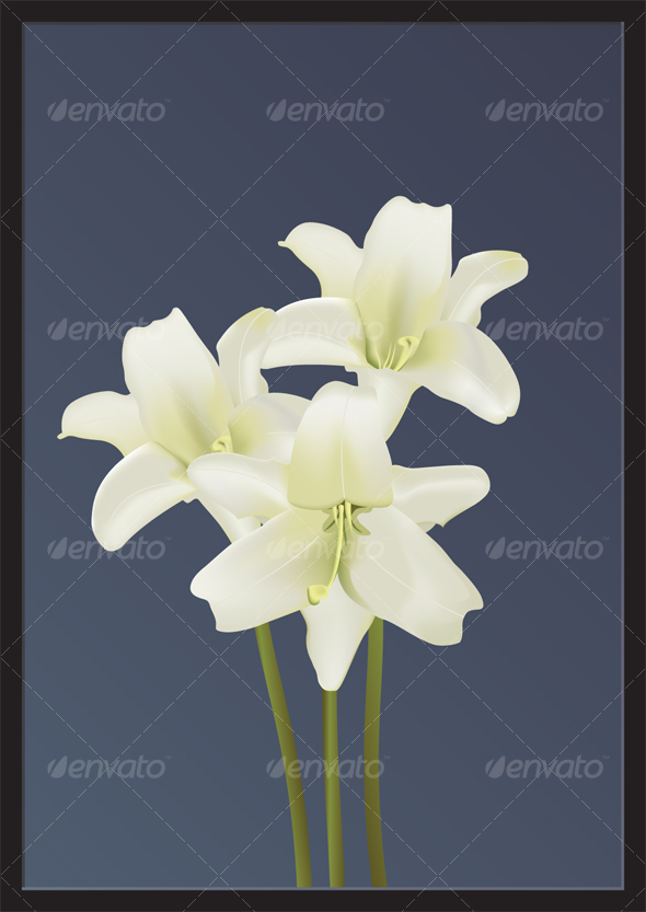 Easter Lillies - Organic Objects Objects