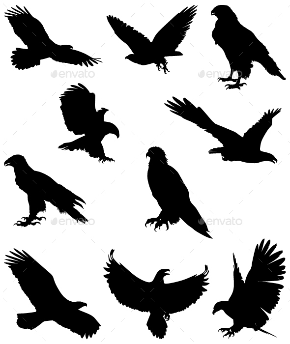 Eagles Silhouettes - Animals Characters