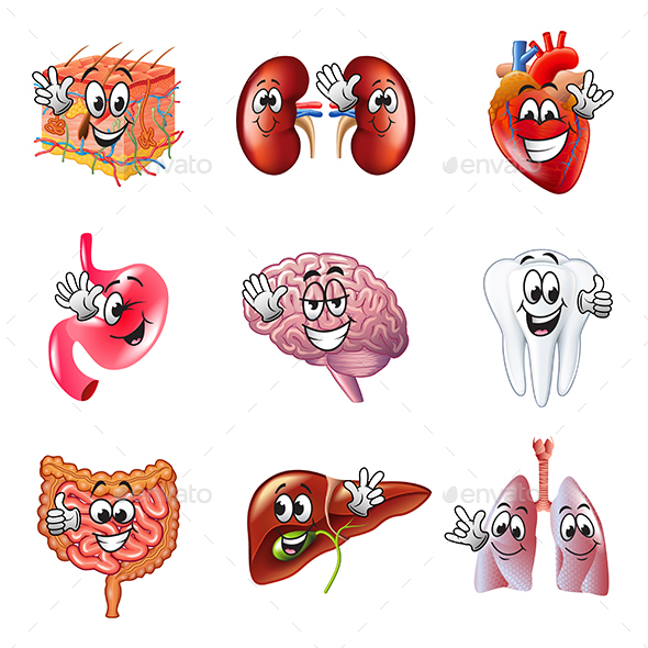 Funny Cartoon Human Organs Icons Vector Set - Health/Medicine Conceptual