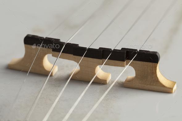 Banjo bridge - Stock Photo - Images