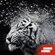 Gif Animated Shatter Photoshop Action - GraphicRiver Item for Sale