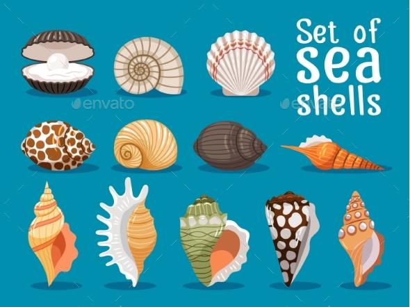 Sea Shells Flat Icons Set - Decorative Symbols Decorative
