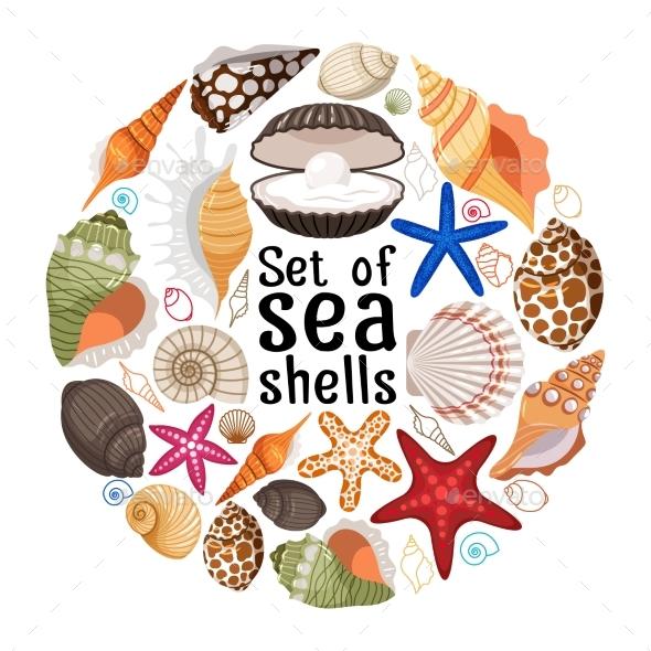 Aquatic Badge With Sea Pearl Shells - Decorative Vectors